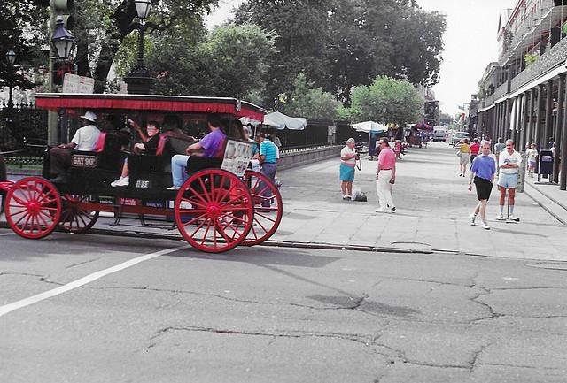 New Orleans - Louisiana - Jackson Square - Carriage Tours  - United States