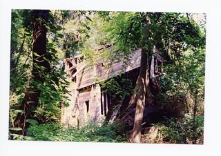 2021-01-16. Huffman's Mill 1995 2