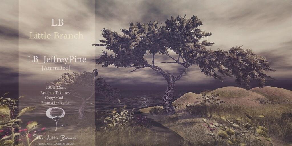The Little Branc – Jeffrey Pine (Animated} – Wanderlust Weekend, 50L