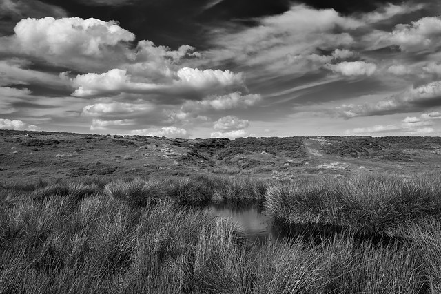 North York Moors in monochrome