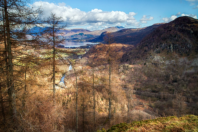 view past the trees, from Castle Crag.
