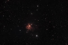 NGC1579 Northern Triffid