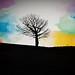 Tree ❤