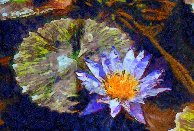 Another Water Lily - Painting style