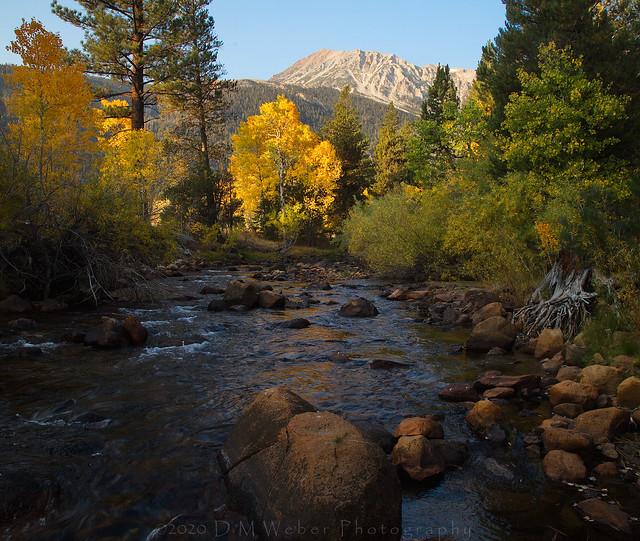 Lee Vining Creek, a fine fall morning