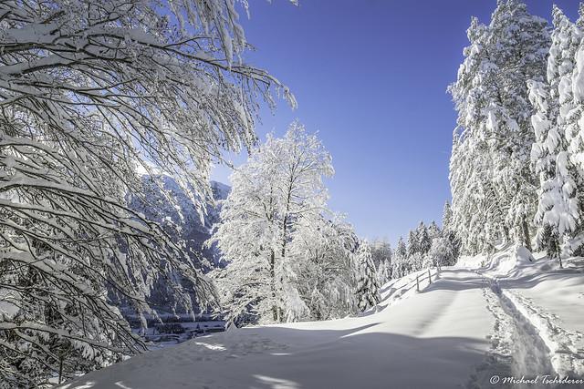 Winter Weißenbach am Lech