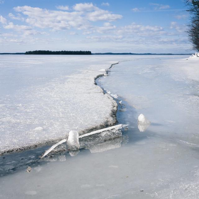 Spring 2020 in Lintuniemi