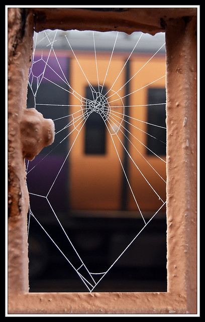 The glass crack'd