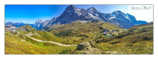 Les Alpes Bernoise depuis le Grindelwaldblick - Kleine Scheidegg