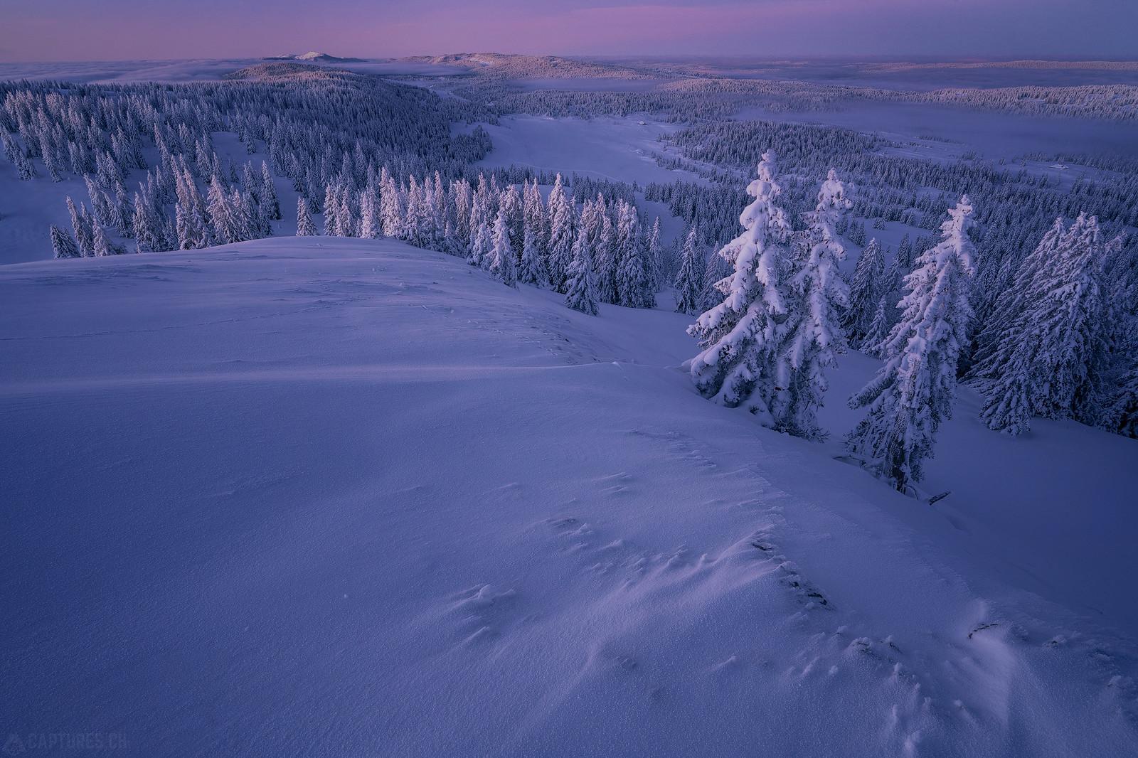 Iced landscape - Jura
