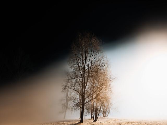 Tähtvere, Tartu, Estonia, January 2021