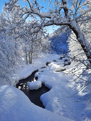 Winter im Kleinwalserta