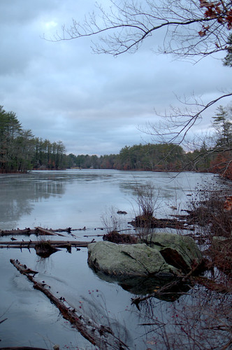 leaves field pond snow ice tree water lake massachusetts foliage winter cold reflection landscape blue sunset rain cloudy dusk