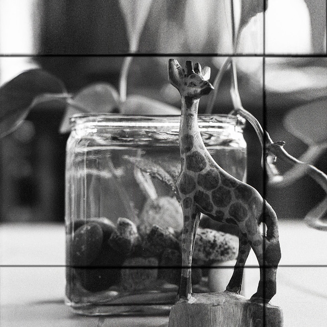 One Table - Film Mamiya