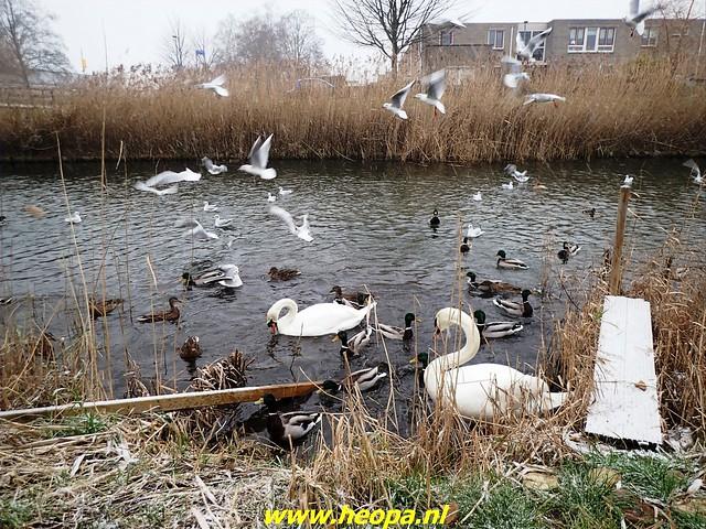 2021-01-16     Almere in de       Sneeuw 20 km  (15)