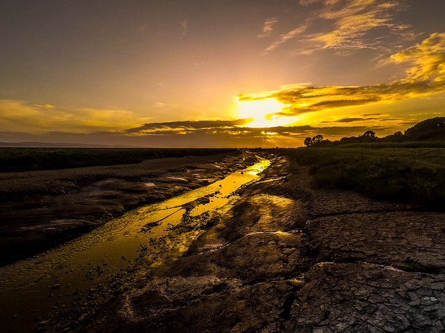 Along The Wirral Coast