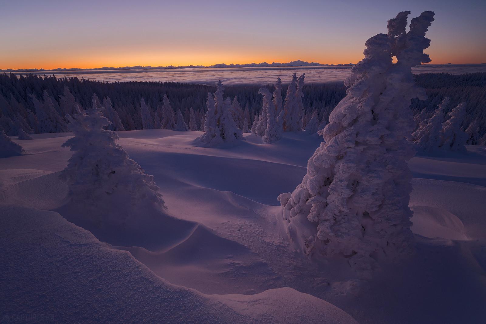 Morning light - Jura