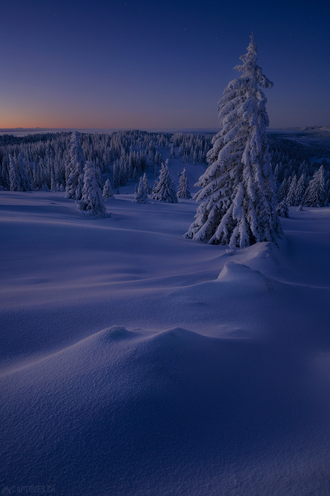 Snow lines - Jura