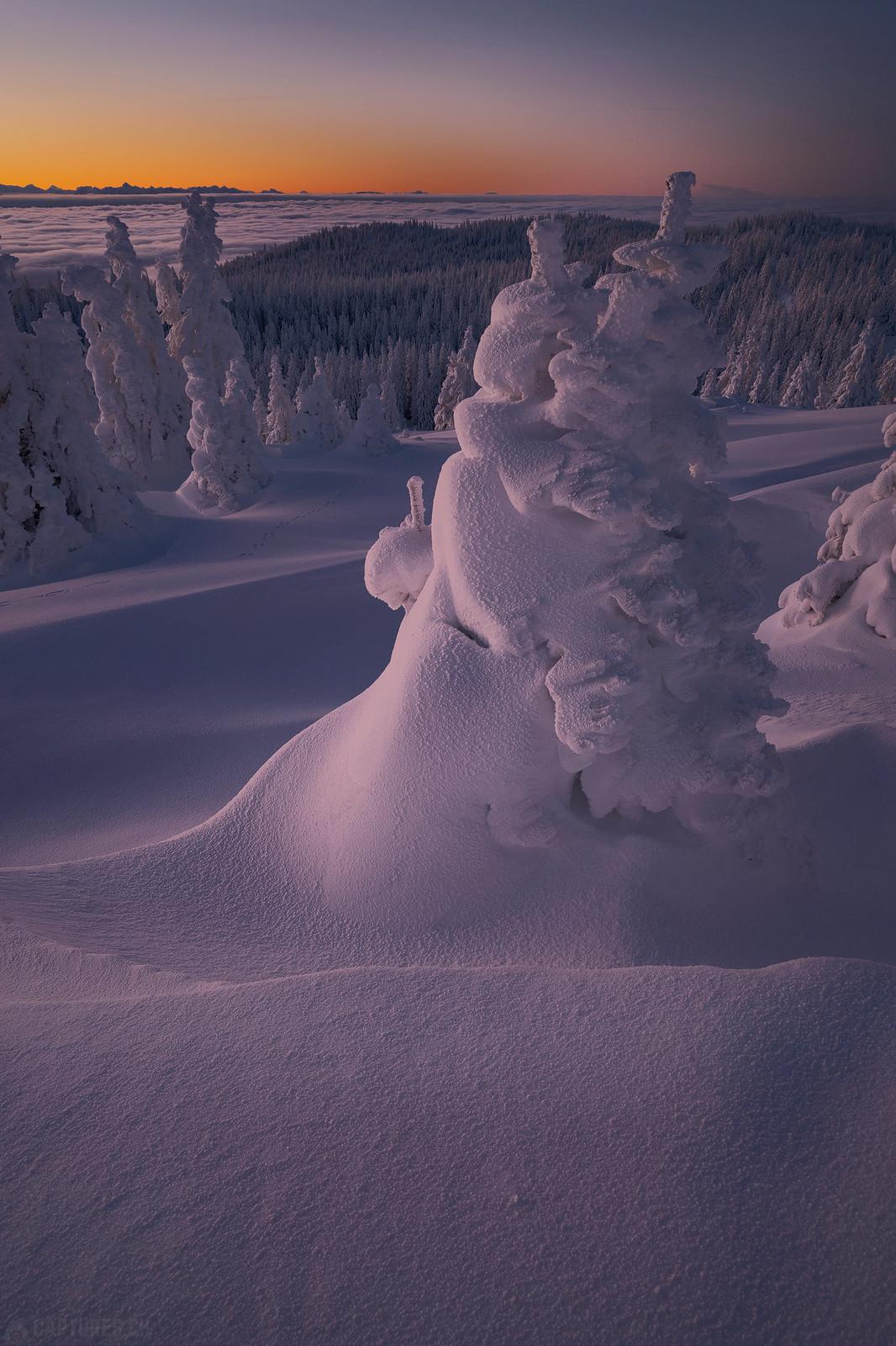 Snow creature - Jura