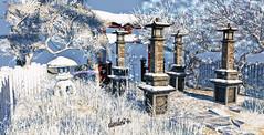 Tsubo-Niwa Winter