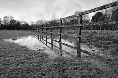 Waterlogged field fence cemetery.