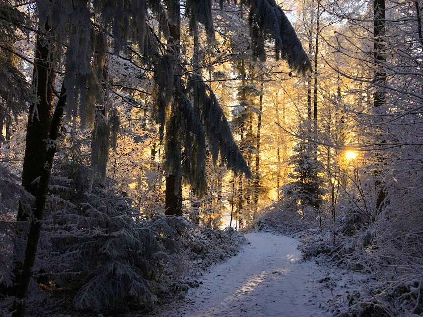Winter also has charm
