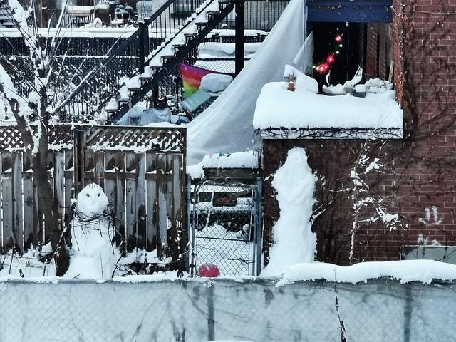 Snow Neighbours