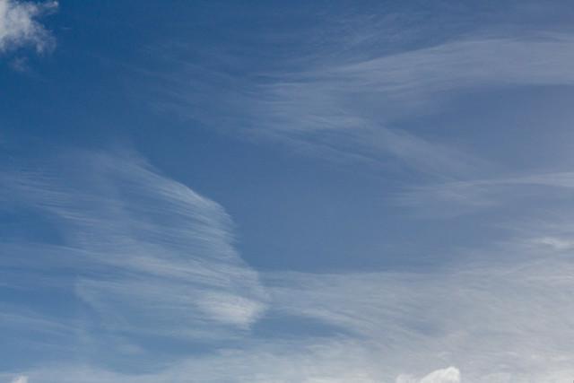 Cirrus clouds (20210117 1122)