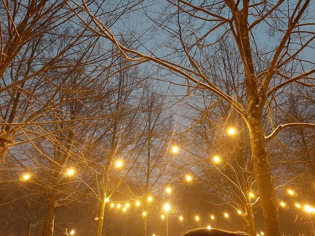 Luces Parc Royale