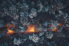 Light in the park   Kaunas aerial