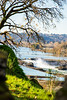 Another perspective of the Willamette Falls