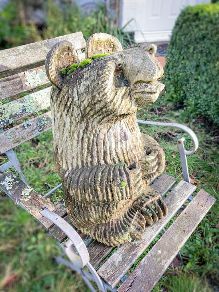 Woodinville Bear