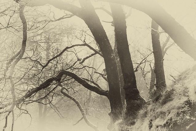 Castle Crag Mists