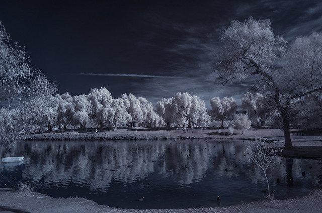 Having The Infrared Blues At Lindo Lake