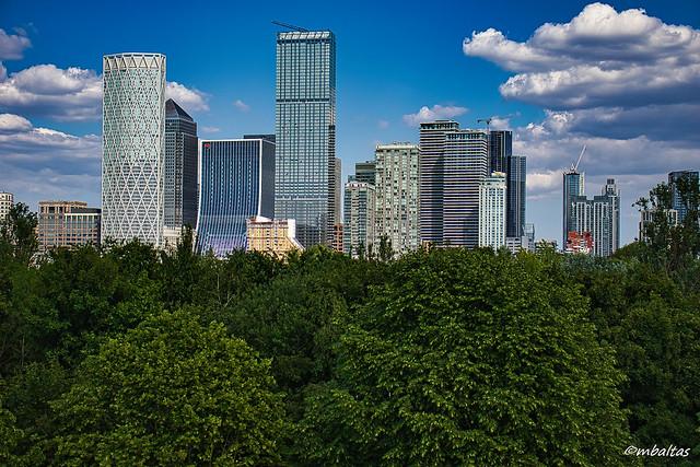 High-rise buildings vs trees