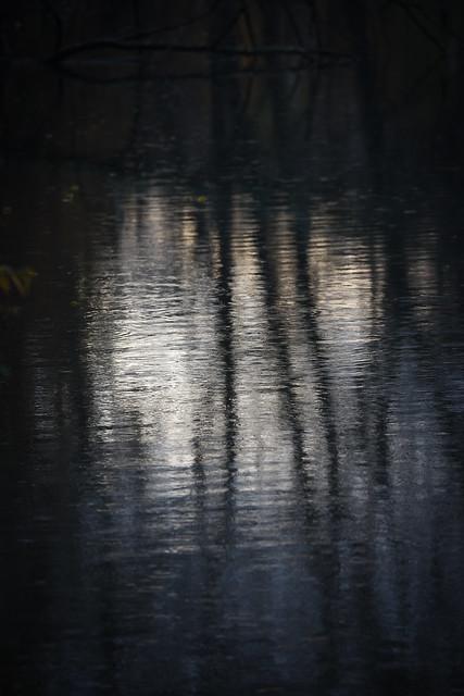 De sombres reflets