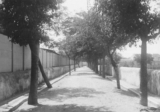 Rua do Arco da Torre, Bom Sucesso (E. Portugal, 1939)