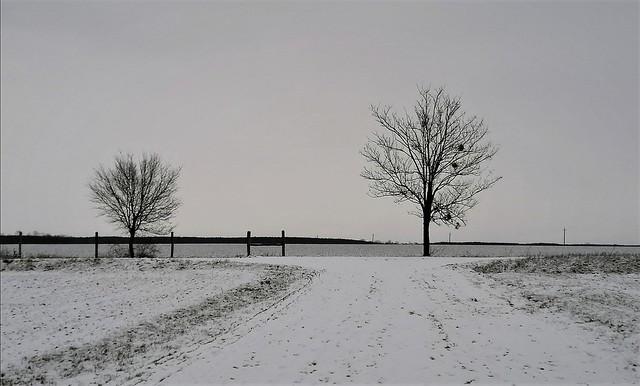 Fehér csend a pusztában (Ják)