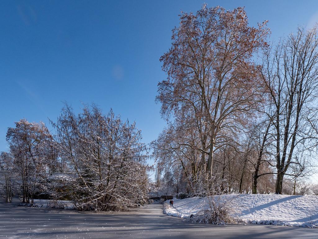 """Toujours la même journée d""""hiver... + recadrage 50846199876_555bd0fcd4_b"""