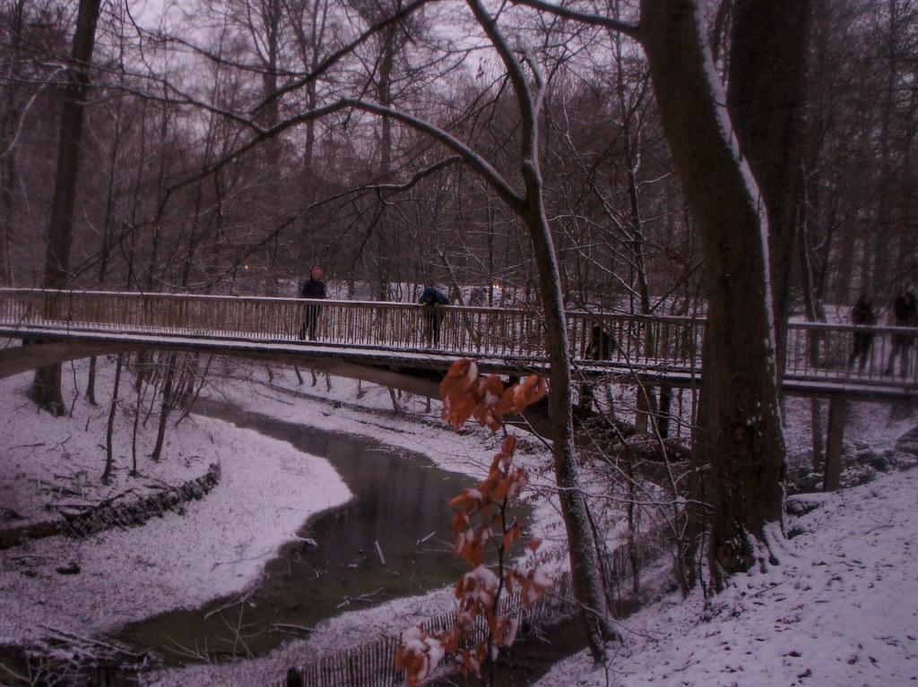 Puente del parque Osseghem