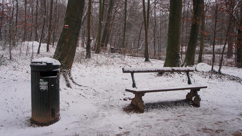 El parque Osseghem Laeken nevado
