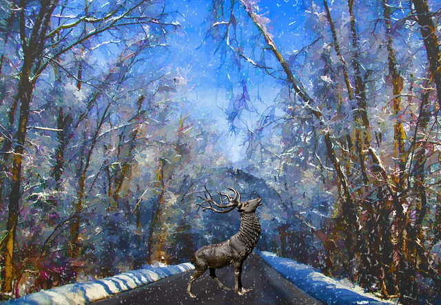 Winter with Stag