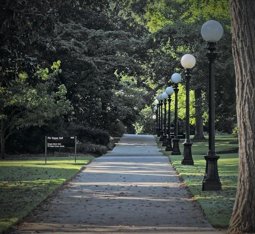 athens athensga georgia ga uga universityofgeorgia landscape
