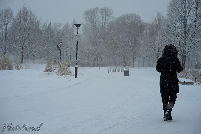 au parc Jarry pendant la tempête