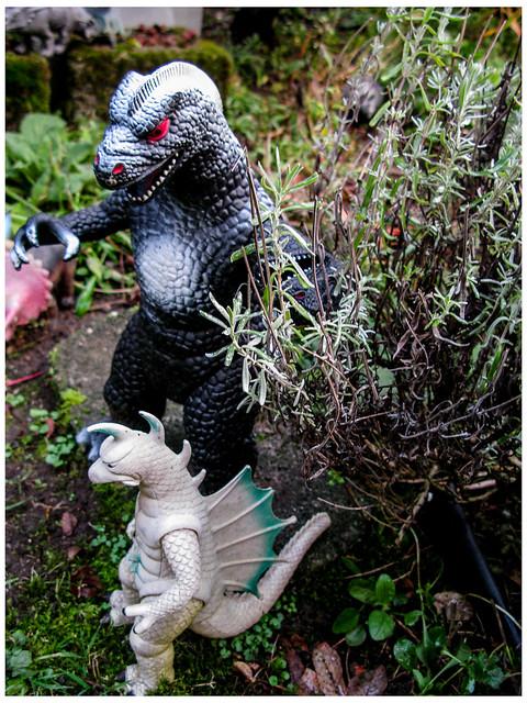 Godzilla Like Lavendar