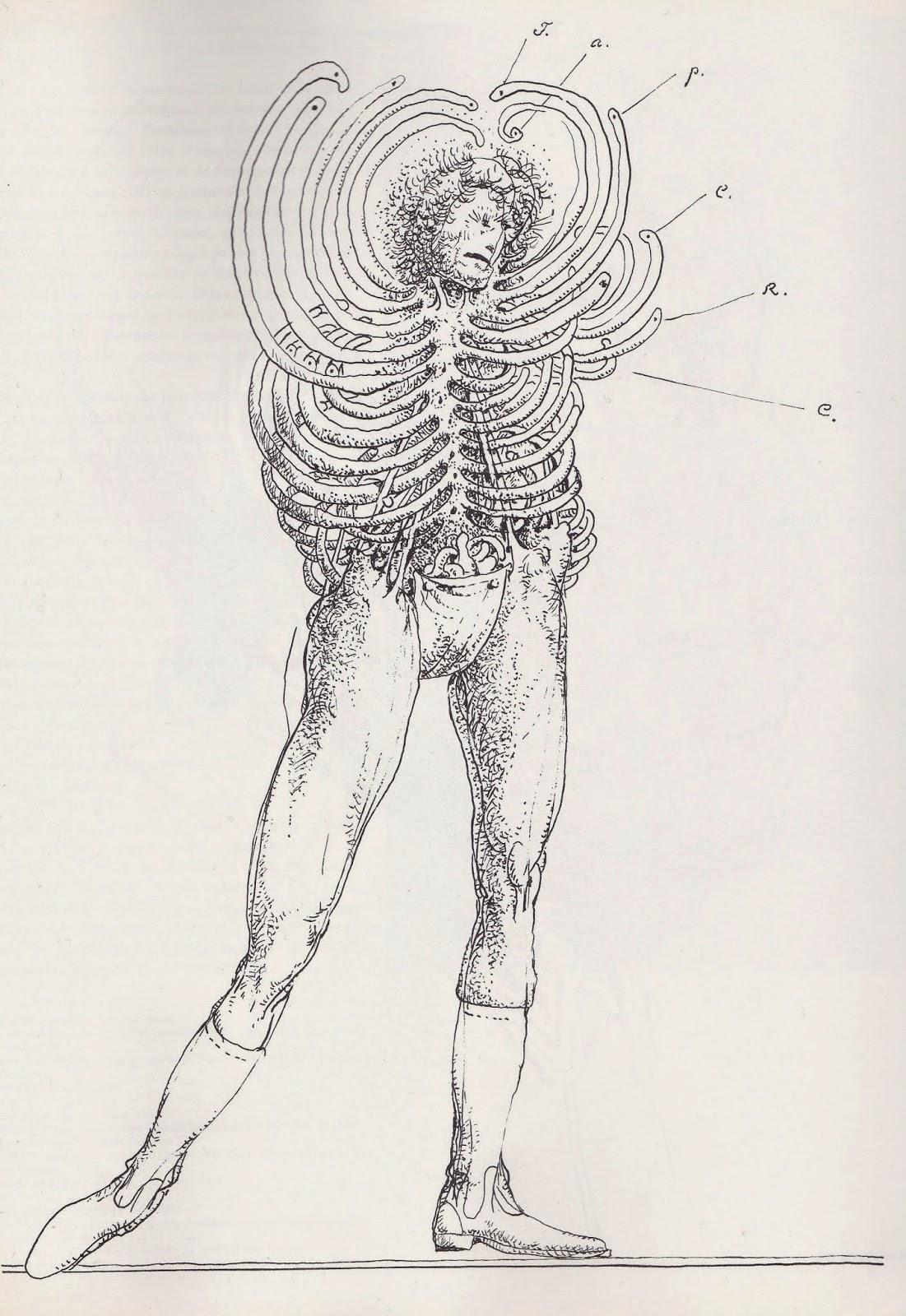 Franciszek Starowieyski - Drawing 3
