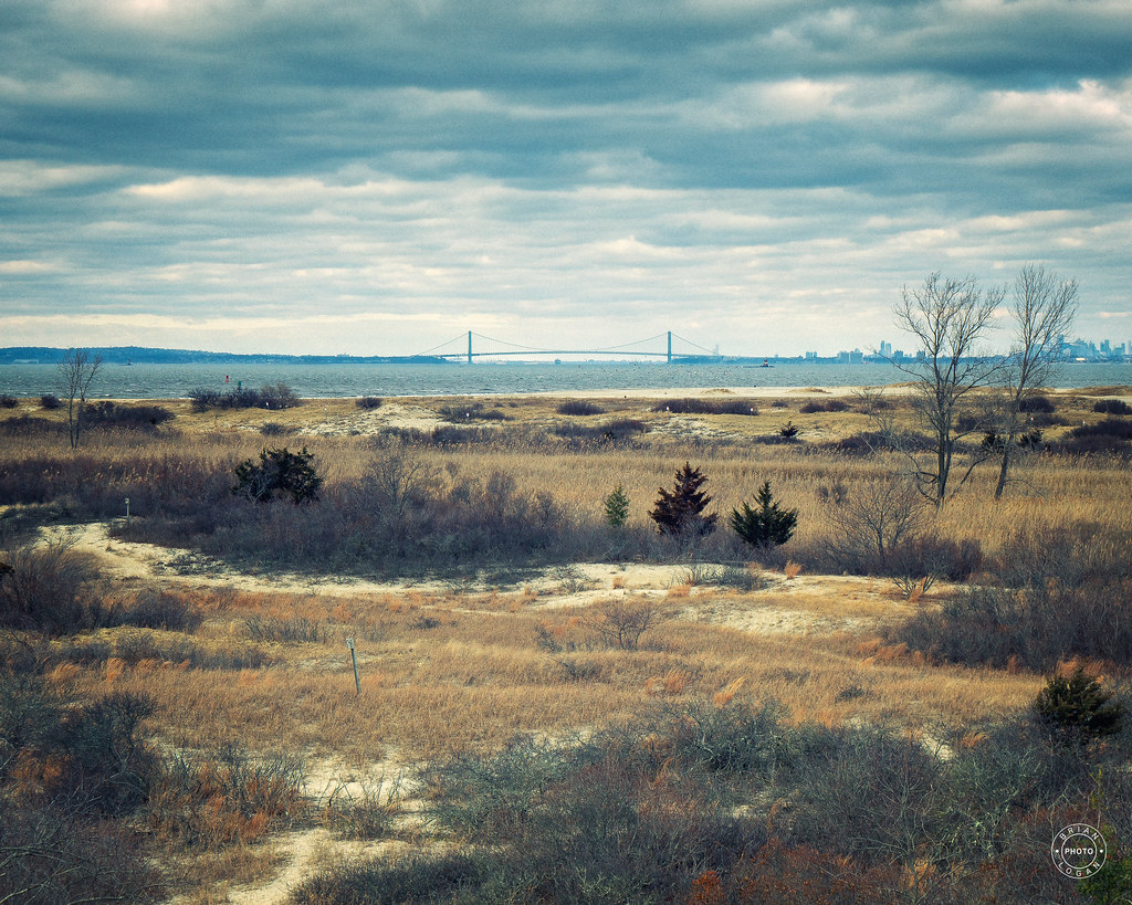 A view from Sandy Hook's North Beach Observation Deck