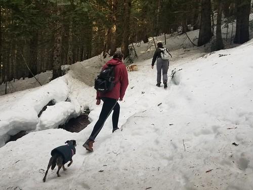 2021-01-16 adam snow hike