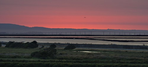 fremont california donedwardssanfranciscobaynationalwildliferefuge donedwardsnationalwildliferefuge donedwards wildliferefuge sanfranciscobay sanfranciscobayarea bay water saltpond bridge sanmateobridge airplane landing land shortfinal outdoor day dusk red redsky bluehour sony sonya6000 a6000 tamron tamronsp150600mmf563 1xp raw photomatix hdr qualityhdr qualityhdrphotography sunset fav100 usa