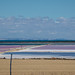 Heat haze over the Price salt fields 17/1/21